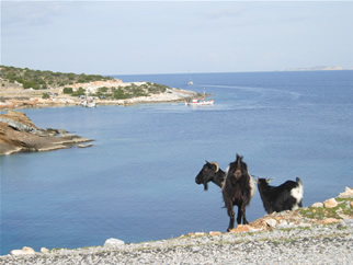 East side of Naxos